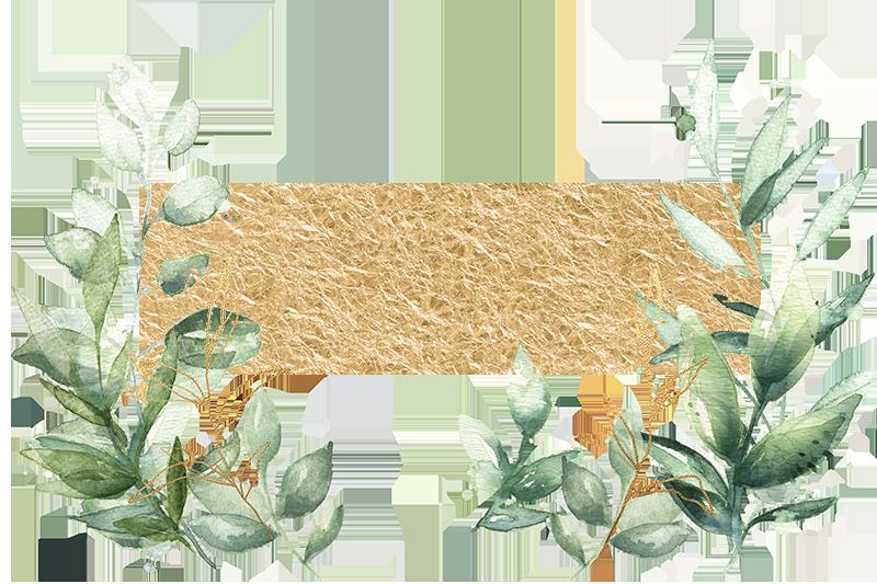 fotograf umeå sandra viklund